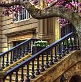 Springtime In Boston by Joann Vitali