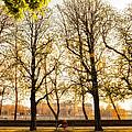 Springtime In Paris by Ag Barros
