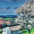 Springtime In The Blue Ridge Mountains II by Dan Carmichael