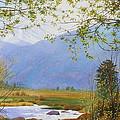 Springtime Moraine Park by Daniel Dayley