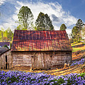 Springtime On The Farm by Debra and Dave Vanderlaan