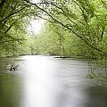 Springtime River by Dirk Ercken