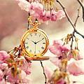 Springtime by Steffen Gierok