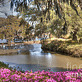 Springtime View by Dale Powell