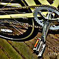 Sprocket And Chain by Kaye Menner