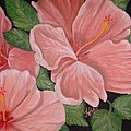 Square Foot Hibiscus by Kathern Welsh