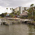 Squid Lips Restaurant  At The Eau Gallie Causeway Over The India by Allan  Hughes