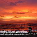 Sri Lankan Sunset by Las Ratnayake