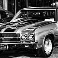 Ss Chevelle by Cathy Anderson