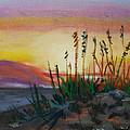 Beach At Sunrise by Michael Daniels