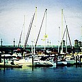 St. Augustine Sailboats by Laurie Perry