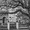 St. Charles Ave. Mansion 2 Bw by Steve Harrington