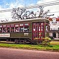 St. Charles Ave. Streetcar 2 by Steve Harrington
