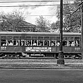 St. Charles Ave. Streetcar Monochrome by Steve Harrington