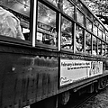 St. Charles Ave Streetcar Whizzes By-black And White by Kathleen K Parker