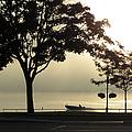 St. Clair Sunrise With Fog by Mary Bedy