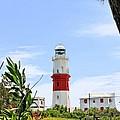 St. Davids Lighthouse by DJ Florek