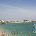 St Ives From The Train by Terri Waters