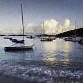 St. John's Bay by Curtis Dale