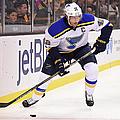 St. Louis Blues V Boston Bruins by Brian Babineau