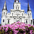 St. Louis Cathedral And Flowers In New Orleans by Paul Velgos