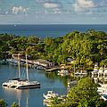 St Lucia Harbor by Brian Jannsen