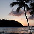 St. Lucian Sunset by Laurel Best