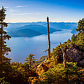 St Mark's Summit Near Vancouver by Alexis Birkill