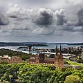St Mary's Cathedral - Sydney Australia V2 by Douglas Barnard