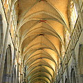 St. Maurice Cathedral In Vienne by Laurel Talabere