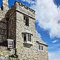 St Michael's Mount 2 by Susie Peek