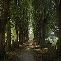 St. Nicholas Churchyard by Dan McManus