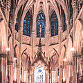 St Patricks Cathedral New York Usa by Liz Leyden