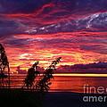 St. Petersburg Sunset by Sean Hughes