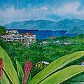 St. Thomas Virgin Islands by Frank Hunter