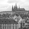 St. Vitus Cathedral Prague by Suzanne Oesterling