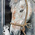 Stablemates by Valerie Yvette Smith