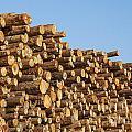 Stacks Of Logs by Bryan Mullennix