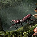 Stag Beetle by Daniel Eskridge