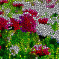 Stained Glass Chrysanthemum Flowers by Jeelan Clark