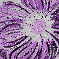 Stained Glass Flower With Purple Stripes by Barbara Griffin