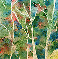 Stained Glass Forest In Spring by Maura Satchell