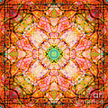 Stained Glass Mandala by Susan Bloom