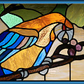 Stained Glass Parrot Window by Thomas Woolworth