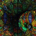 Stained Glass Spiral by Amanda Moore
