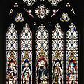 Stained-glass Window 1 by Susie Peek
