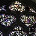 Stained Glass Window by Patricia Hofmeester