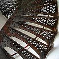 Staircase Of The Chambers Island Lighthouse by Carol Toepke