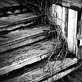 Stairing Taken Over By Time by LeeAnn McLaneGoetz McLaneGoetzStudioLLCcom
