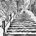 Stairs In Winter by Odon Czintos